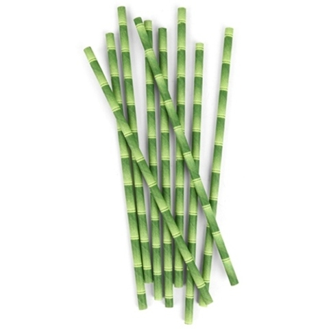 Biodegradable Paper Straws Bamboo Box of 144